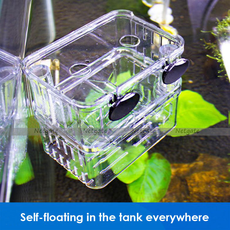 Aquarium self floating multi functional divider tank for for Floating plants for betta fish