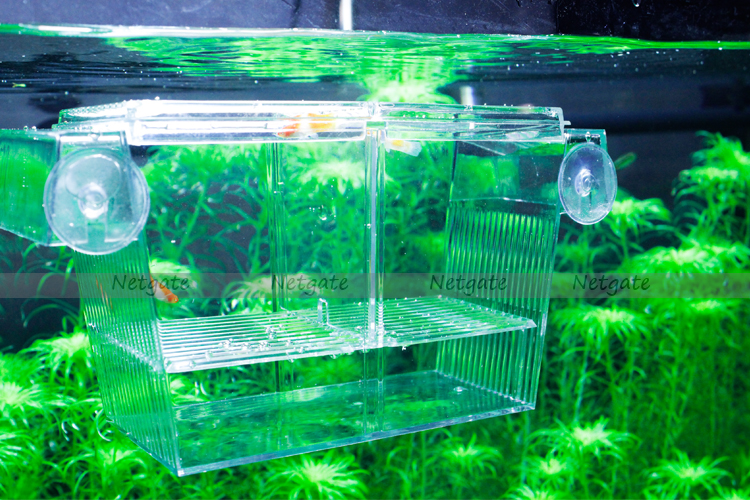 Aquarium multi functional divider tank for fish breeding for Multiple betta fish tank